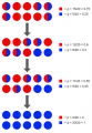 Random genetic drift with q frequency reaching 1