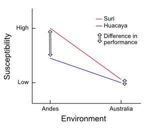 An example of a genotype-environment interaction
