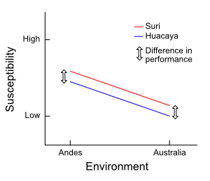 An example of no genotype-environment interaction
