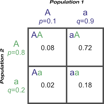 Punnett square showing genotypic frequencies from an F1 cross of two unrelated populations at the A locus